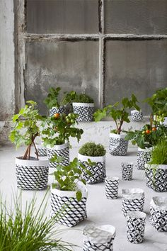 Graphic geometric plant bags from Serax Maison
