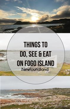 Travel Guide: Fogo Island, Newfoundland, where to stay, things to do, places to see and what to eat. A comprehensive guide to Fogo Island Newfoundland. Fogo Island Newfoundland, Newfoundland Tourism, Newfoundland And Labrador, Canada Travel, Travel Usa, Fogo Island Inn, Island Holidays, East Coast Road Trip, Atlantic Canada