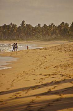 Praia do Forte, Bahia, Brazil, at the Eco Tivoli Resort.
