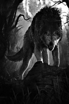 Right hand of Noughta Bor'racun Diy Art Projects Canvas, Der Steppenwolf, Angry Wolf, Wolf Tattoo Sleeve, Wolf Spirit Animal, Wolf Artwork, Werewolf Art, Satanic Art, Dire Wolf