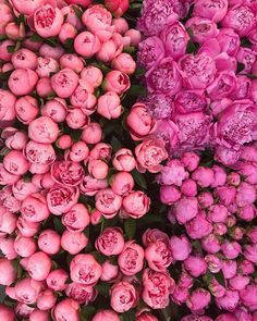 Think pink 💖💖💘