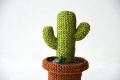 Cactus del deserto Crochet Pattern - Cactus messicano Pattern - Cactus verde - Crochet Cactus Pattern Crochet pianta - pianta Home Decor - fai da te impianto