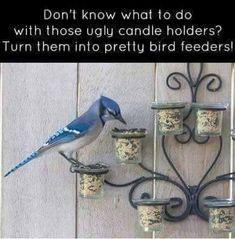 Turn candleholders into birdfeeders!