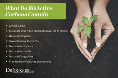 BioActive Carbons: High Energy Compounds for Detox and Vitality Candida Fungus, Candida Overgrowth, Liver Detoxification, Organic Acid, Natural Antibiotics, Chronic Stress, Anti Inflammatory Diet, Oxidative Stress