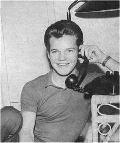 Bobby Vee And Crickets Just For Fun