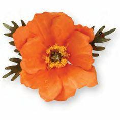 Amazon.com: Sizzix Thinlits - Thinlits 9PK Flower Poppy: Everything Else