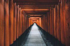 "Kyoto - Fushimi Inari Taisha <a href=""http://instagram.com/the_kafka"">Instagram</a> | <a href=""http://merlinkafka.co"">Portfolio</a> | <a href=""http://merlinkafka.tumblr.com"">Tumblr</a>"