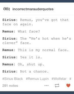 Sirius Black and Remus Lupin