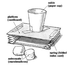 Build a lunar lander shock absorber. STEM, technology, engineering, marshmallows