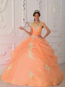 221c5f1f1cf Orange Red V-neck Taffeta and Organza Appliqued Beaded Quinceanera Dress  Affordable Wedding Dresses