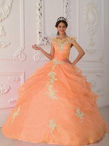 Orange Red V-neck Taffeta and Organza Appliqued Beaded Quinceanera Dress
