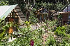 Spiritual Alchemist Work/Trade Program - Mystical Yoga Farm on Lake Atinlan in Guatemala Lakeside Cottage, Work Opportunities, Garden Office, Spiritual Practices, Alchemist, Mystic, Spirituality, Around The Worlds, Cabin