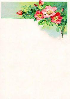 Vintage Field & Garden: Vintage Background: Victorian Hellebore Illustrated Border 1
