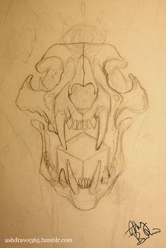 21 Sketch of a Bobcat skull.January 21 Sketch of a Bobcat skull. Cool Art Drawings, Drawing Sketches, Easy Skull Drawings, Dark Drawings, Animal Sketches, Animal Drawings, Animal Skull Drawing, Creature Drawings, Furry Drawing