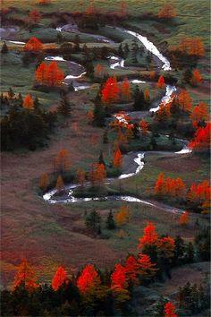 Yoshigadaira High Moor - Gunma, Japan