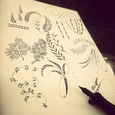 Time to start testing out some flourishing  #calligraphy #calligraphyhk #hkcalligraphy #flourishes #practice #flourishing #pointedpen #dippen #calligraphypractice #flourishforum #handdrawn #patterns #doodles #curiouscalligrapher #hkig #hkart #ideas #inkdropletcreations by inkdropletcreations