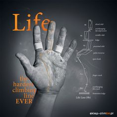 LifeLine  http://sklep-climbe.pl/