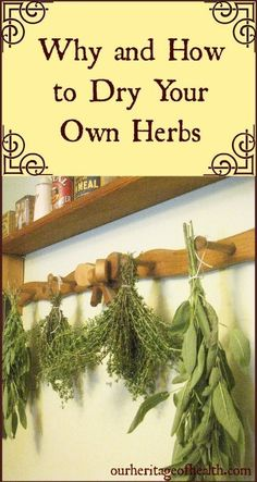 I grow my own fresh herbs and have always been interested in learning how to dry them. No more tossing out unused/extra herbs!