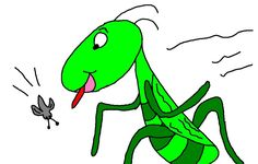 The 10 Plagues Of Egypt Locust Grasshopper lesson with matching materials. Plague #8