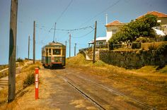 Climbing the hill from Bronte Beach, 1959 Bronte Beach, Metro Rail, Old Trains, Light Rail, Public Transport, Historical Photos, Climbing, Sydney, Transportation