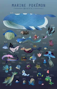 [maikonkon.tumblr.com] #Pokemon Marine Life poster #Illustration
