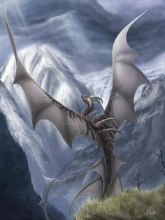 Dragon flying over snow covered mountaintops.