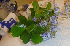 Mesa para as crianças Plants, Events, Plant, Planets