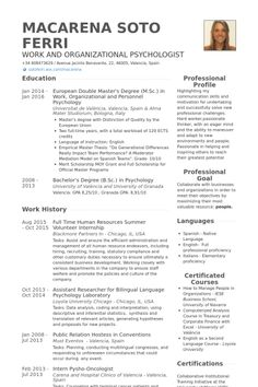 Full Time Human Resources Summer Volunteer Internship Resume Example  Work Resume Examples
