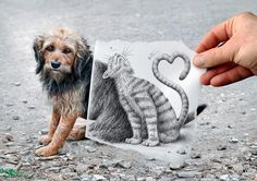 "A cat seems to snuggle up to a dog in this picture from the Pencil Vs Camera series by Belgian artist Ben Heine. The 28-year-old takes  photographs of people or landscapes but covers a part of the image with a pencil sketch. The sketch adds a bizarre twist to the image and acts ""like a magic door to a fantasy and surrealistic world"".    //  Ben Heine/Solent News & Photo Agency"
