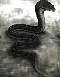 Possibly the Basilisk (snake serpent) that was in the Chamber of Secrets that was hidden in Hogwarts Castle in Harry Potter and the Chamber of Secrets