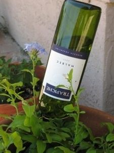 water your garden with wine bottles instead of those 'globes' - Click image to find more Outdoors Pinterest pins