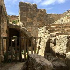 el castillo de Ajloun10