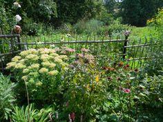 Ukázková přírodní zahrada Libická Lhotka - Zahrady - Zahradní turistika