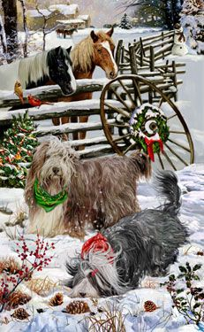 "New for 2012! Bearded Collie Christmas Holiday Cards are 8 1/2"" x 5 1/2"" and come in packages of 12 cards. One design per package. All designs include envelopes, your personal message, and choice of greeting. Select the inside greeting of your choice from the menu below.Add your custom personal message to the Comments box during checkout."