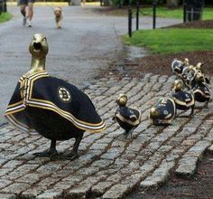 The Ducks are Boston Strong...Go B'S!!