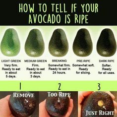 Who doesn't love Avocado? It is high in dietary fiber, monounsaturated fats (great for heart health), and loaded … Avocado Dessert, Avocado Salad Recipes, Easy Salad Recipes, Easy Salads, Avacado Meals, Avacado Snacks, Avacado Breakfast, Freezer Recipes, Healthy Snacks