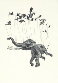 I was looking through an Illustration book and I came across the work of Stuart Patience. He is an illustration and animation gradu. Art And Illustration, Illustrations Posters, Elephant Illustration, Animal Illustrations, Street Art, Arte Sketchbook, Elephant Love, Flying Elephant, Elephant Art