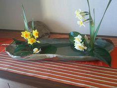 『生け花        自分流    生け花には あれこれ 作法があるのでしょうが、、白と黄色を 友人作の器に    後に 控えるのは        亀石       そう  明日香 の 巨石     実物が 見たくて 明日香へ     博物館で このレプリカがどうしても 欲しくて、、こんなのどうするって 迷ったっけ       満開の水仙が連れてきた    遠い記憶』ミルキーさんが投稿した黄水仙,水仙,いけばなコンテスト,思い出,和風ティスト,お気に入りの器の画像です。 (2017月2月12日)