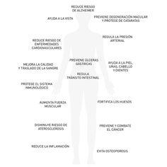 Nutre tu cuerpo: espinaca ©blamag