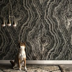 Lighting designers Apparatus teamed with Zak+Fox for a wall covering that offers twofold drama: a wallpaper made from natural linen and a pattern that resembles irregular tree rings. The warmth of the pattern and the tactile nature of the fabric add depth and gravitas to any room.
