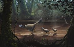 One of the new full-color paleoart pieces featured in my & Agahnim's new book on the creationism/evolution controversy, God's Word or Human Reason? I've been waiting to share ...