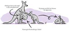 Hedvig Försäkring - Försäkringen du längtar efter att använda Hedvig, Moose Art, Rest, Bar, Drawings, Illustration, Animals, Animales, Animaux