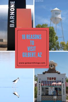 Gilbert residents and visitors are drLeawn to the local, fresh and authentic experiences of this burgeoning community. Let's Go Learn Things in Gilbert, AZ Arizona Road Trip, Arizona Travel, Phoenix Restaurants, Farm Town, Goat Yoga, Gilbert Arizona, Southwest Usa, Travel Usa, Travel Tips