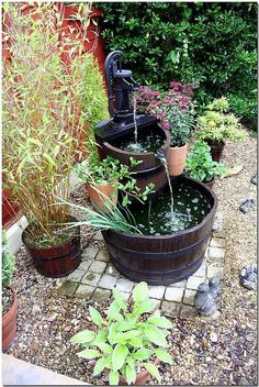 Container water feature. www.ContainerWaterGardens.net