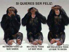 Por algo son lo 3  monos sabios