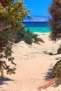 """Passage to the Libyan sea - Chrissi island"" by Hercules Milas Crete Island, North Beach, Most Beautiful Beaches, Beach Look, Hercules, Summer Looks, Travel Mug, Greece, Waves"