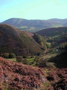 Long Mynd Shropshire > About 45 minutes from Gwaenynog