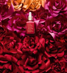 Campaign for Estée Lauder's ANR celebrating the Chinese New Year