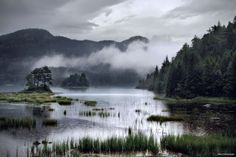 Rainy days in the Norwegian forests [1200800] Photo by Kilian Schönberger #reddit