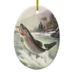 Vintage illustration sports design featuring a fisherman fishing and catching a rainbow trout fish in a river.